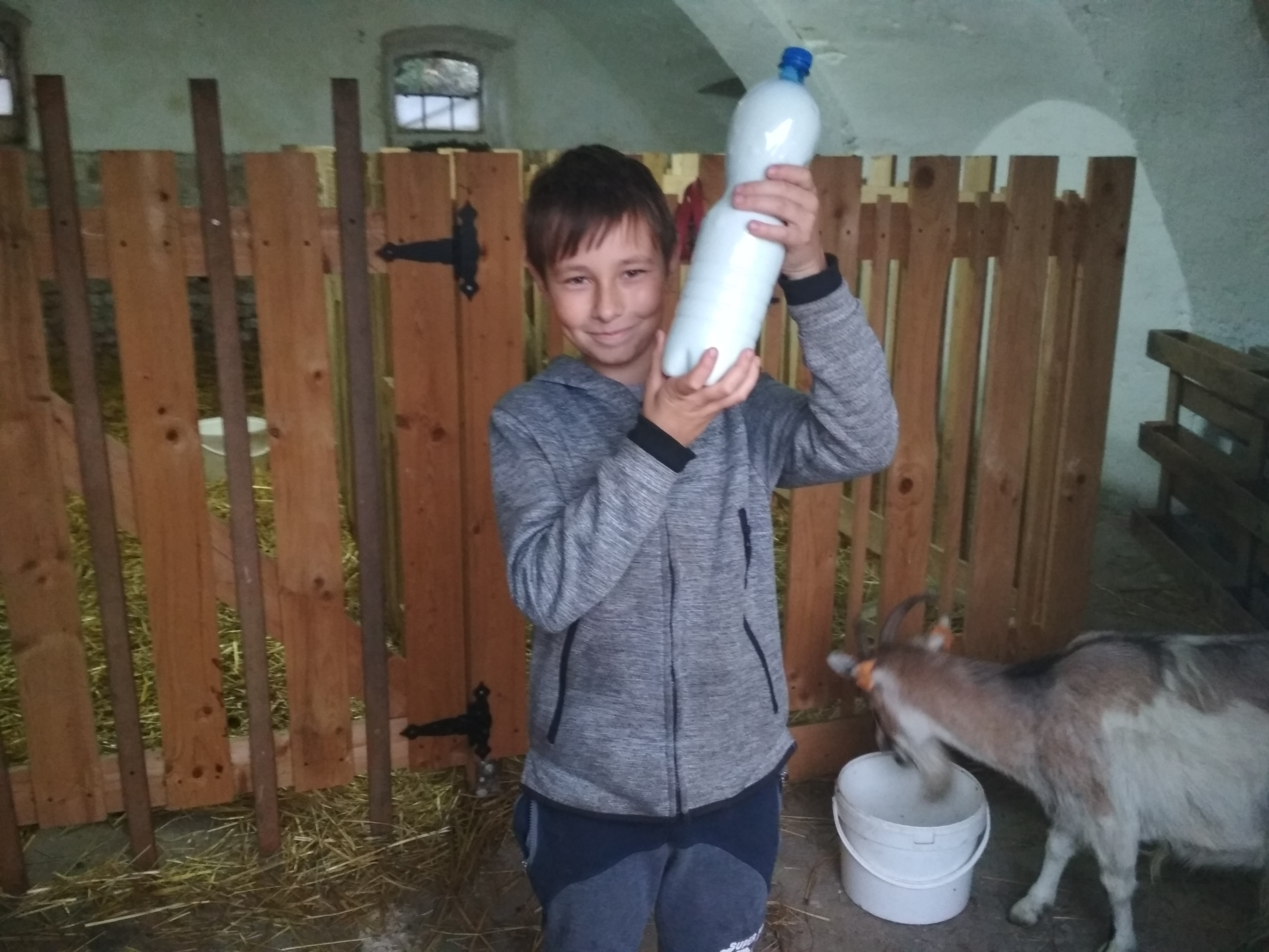 Wiktor i kozy 10